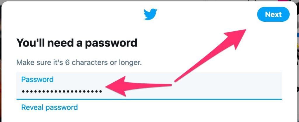 Twitter Sign Up - Password
